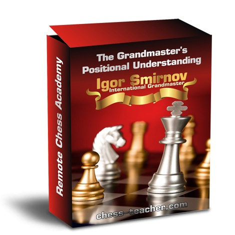 The Grandmaster's Positional Understanding