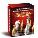 The Grandmaster's Positional Understanding