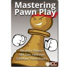 Mastering Pawn Play