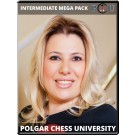 Polgar Chess University Intermediate Bundle.