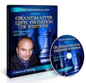 Grandmaster Level Evaluation of Positions with GM Misa Pap
